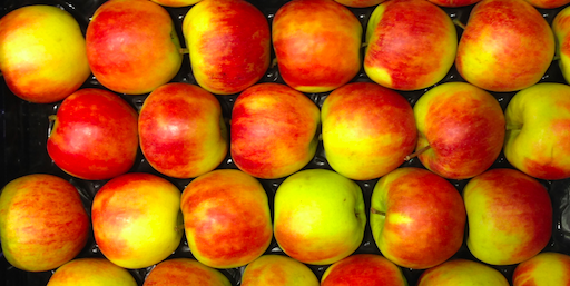 Äpfel, ordentlich sortiert in einer Kiste